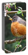 Robin In Apple Tree Portable Battery Charger