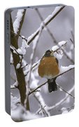 Robin In Snow Portable Battery Charger