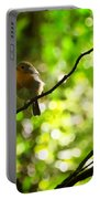 Robin In The Glade Portable Battery Charger