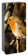 Robin In The Hedgerow Portable Battery Charger