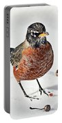 Robin In The Snow Portable Battery Charger