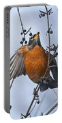 Robin Pictures 84 Portable Battery Charger
