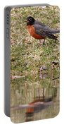 Robin Reflection Portable Battery Charger
