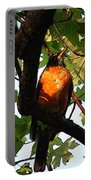 Robin Waiting Portable Battery Charger