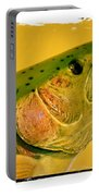Rock Creek Rainbow Portable Battery Charger by Lauren Leigh Hunter Fine Art Photography
