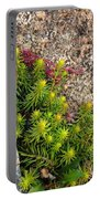 Rock Flower Portable Battery Charger