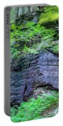 Rock Wall Trail Of The Cedars Glacier National Park Painted Portable Battery Charger