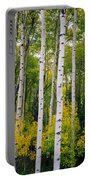 Rocky Mountain Aspen Forest Portable Battery Charger