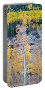 Rocky Mountain Autumn Contrast Portable Battery Charger