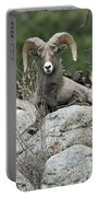 Rocky Mountain Big Horn Portable Battery Charger