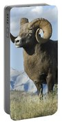 Rocky Mountain Big Horn Sheep Portable Battery Charger by Bob Christopher