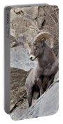 Rocky Mountain Big Horn Sheep Ram Portable Battery Charger