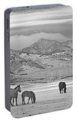 Rocky Mountain Country Morning Bw Portable Battery Charger