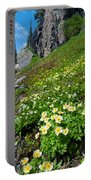 Rocky Mountain Summer Landscape Portable Battery Charger