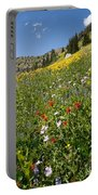 Rocky Mountain Wildflower Landscape Portable Battery Charger