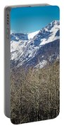 Rocky Mountain Woodland Portable Battery Charger