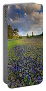 Rocky Prairie Cloud Explosion Portable Battery Charger