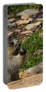 Rodent In The Rockies Portable Battery Charger