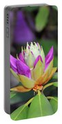 Rododendro Portable Battery Charger