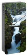 Rogue River Falls 1 Portable Battery Charger
