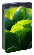 Romaine Study Portable Battery Charger