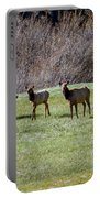 Roosevelt Elk Portable Battery Charger