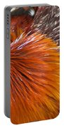 Rooster Colors Portable Battery Charger