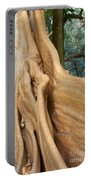 Root Of A Tree Nature Background Portable Battery Charger