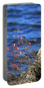 Rooted In Blue  Portable Battery Charger