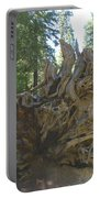Roots Portable Battery Charger by Barbara Snyder
