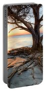 Roots Beach Portable Battery Charger