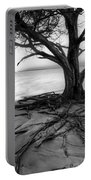 Roots Beach In Black And White Portable Battery Charger