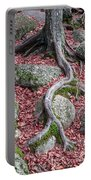 Roots Portable Battery Charger by Edward Fielding