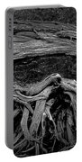 Roots Of A Fallen Tree By Wawa Ontario In Black And White Portable Battery Charger