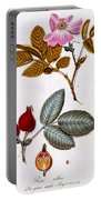 Rosa Villosa Portable Battery Charger by German School