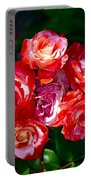 Rose 124 Portable Battery Charger