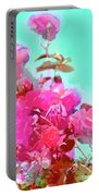 Rose 249 Portable Battery Charger