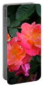 Rose 283 Portable Battery Charger