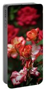 Rose 309 Portable Battery Charger