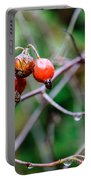 Rose Hip Wet Portable Battery Charger