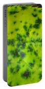 Rose Leaf Portable Battery Charger by Sonali Gangane