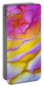 Rose With Dew Drops In Candy Colors Portable Battery Charger
