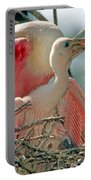 Roseate Spoonbill Feeding Young At Nest Portable Battery Charger