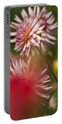 Rosy Dahlias Portable Battery Charger