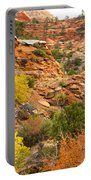Rough Terrain In Autumn Along Zion-mount Carmel Highway In Zion Np-ut Portable Battery Charger