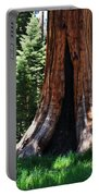 Round Meadow Giant Sequoia Portrait Portable Battery Charger