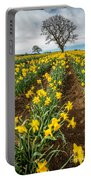 Rows Of Daffodils Portable Battery Charger