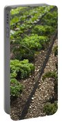 Rows Of Kale Portable Battery Charger