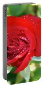 Ruby Rose Diamond Dust Portable Battery Charger