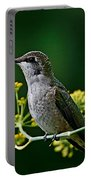 Ruby Throated Hummingbird 1 Portable Battery Charger